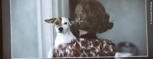 Pixie ist der niedliche Hund im Film und der heimliche Star am Set.