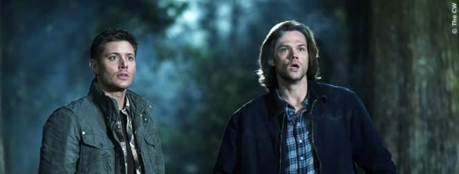 Die Winchester Brüder in Action, FILM.TV