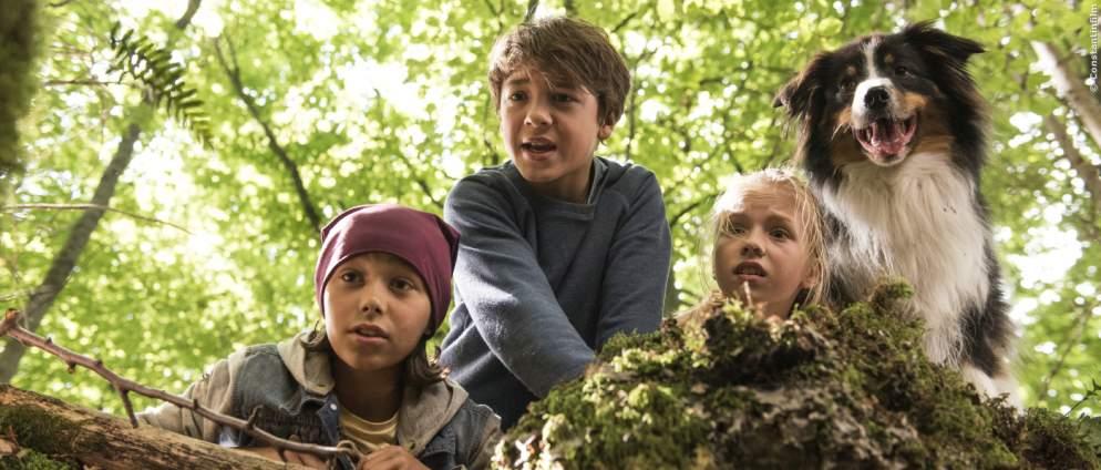 Fünf Freunde - Im Tal Der Dinosaurier