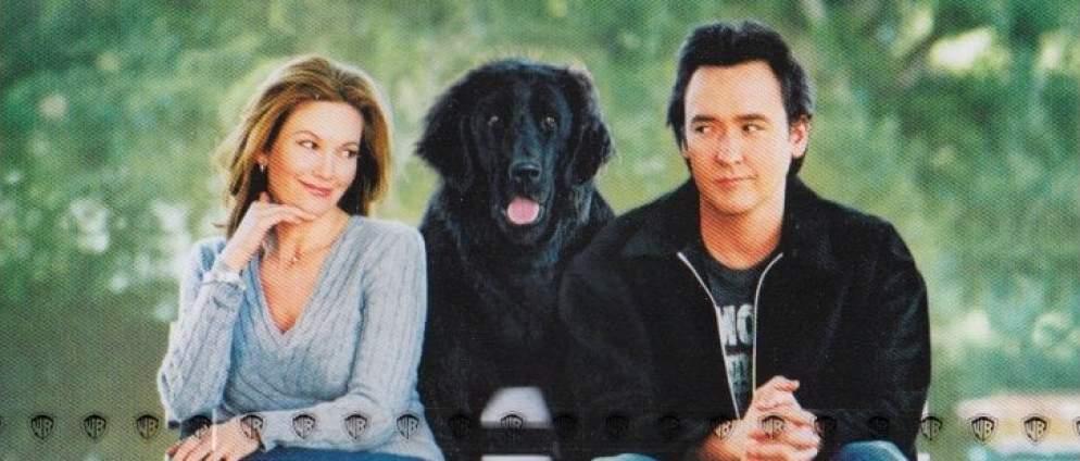 Frau mit Hund sucht Mann mit Herz Trailer