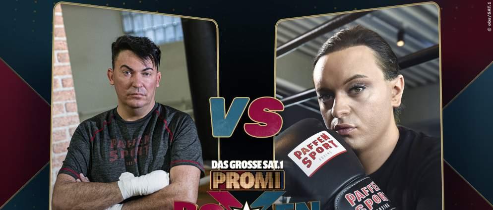 Promiboxen im TV: Diese Promis treten an