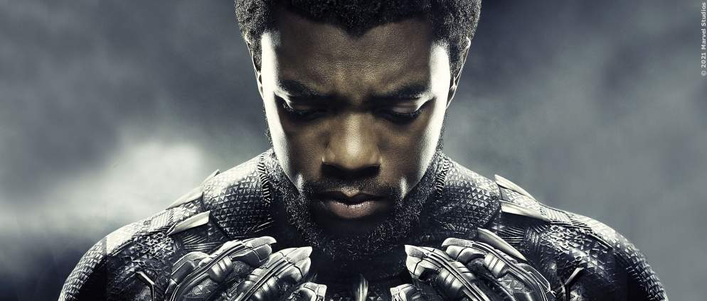 "Bestätigt: Fanliebling kommt in ""Black Panther: Wakanda Forever"" zurück"