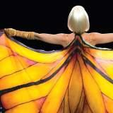 Die Sinnlichkeit des Schmetterlings - Film 2017