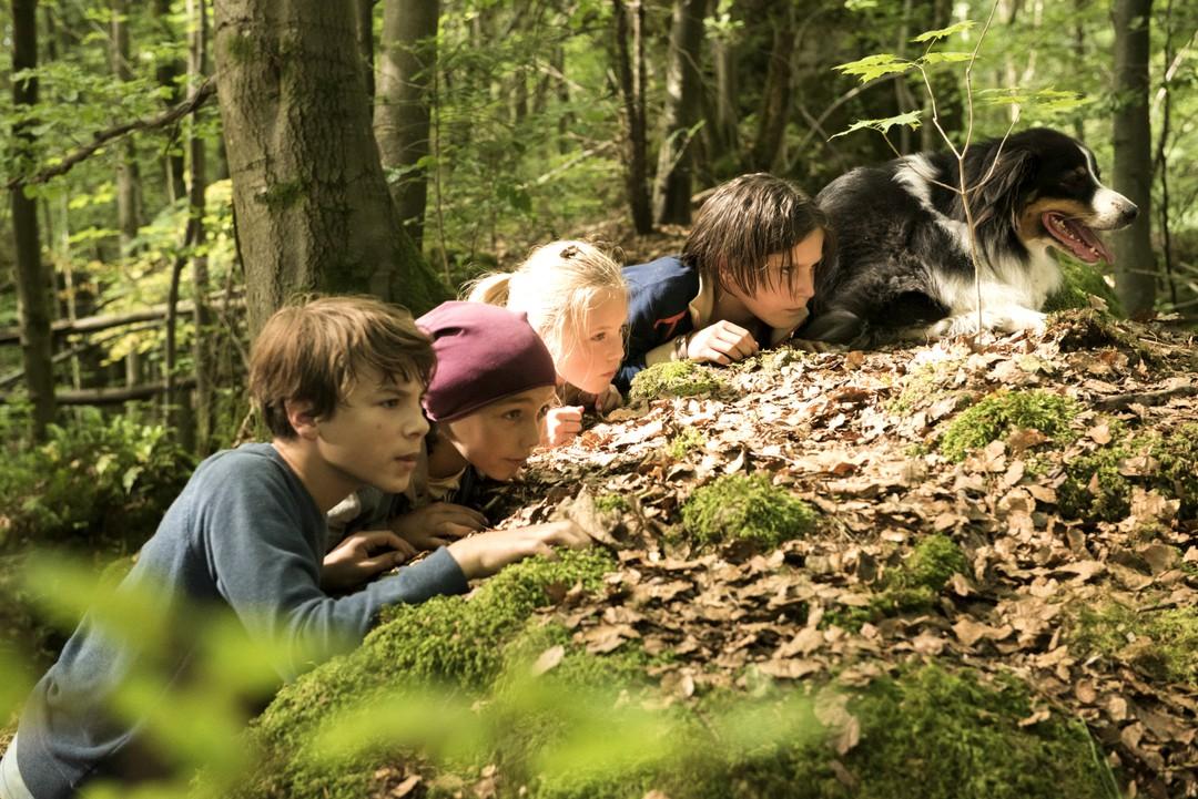 Fünf Freunde - Im Tal Der Dinosaurier - Bild 12 von 16