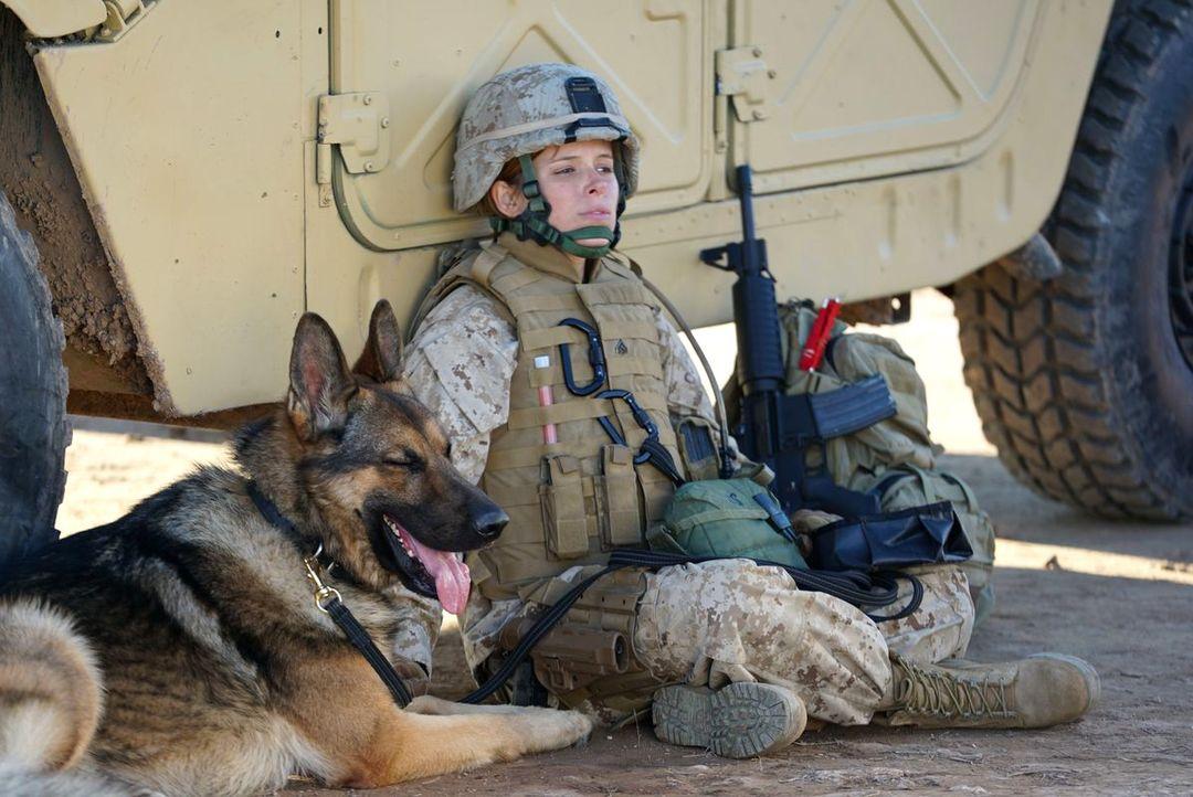 Sergeant Rex - Nicht Ohne Meinen Hund - Bild 5 von 11