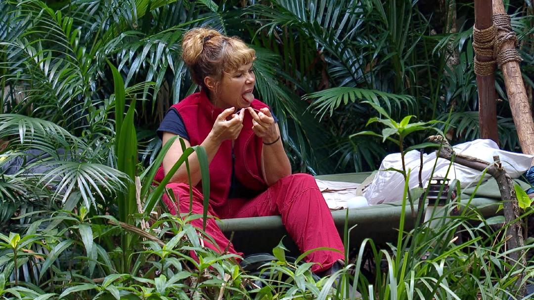 Dschungelcamp: Notfalleinsatz von Dr. Bob - Bild 61 von 65