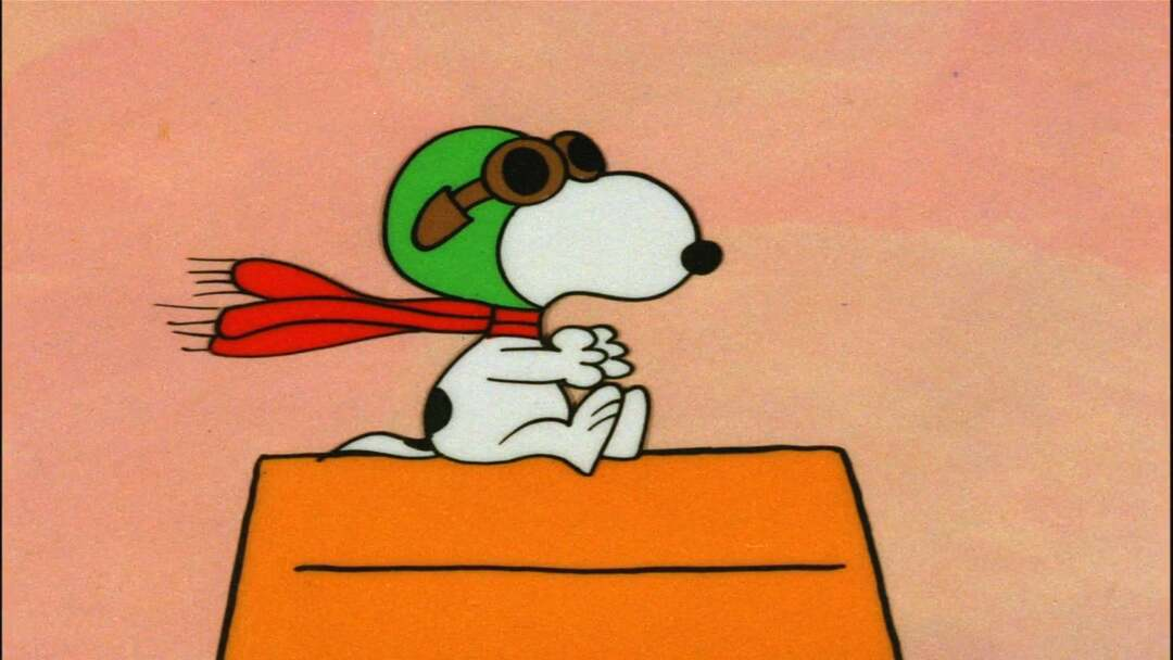 Die Peanuts - Der Große Kürbis - Bild 2 von 9