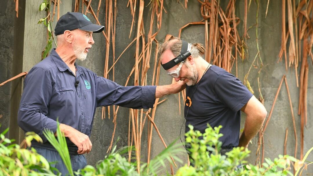 Dschungelcamp 2020: Tag 9 - Camp-Evakuierung und tödliche Spinnen - Bild 1 von 62