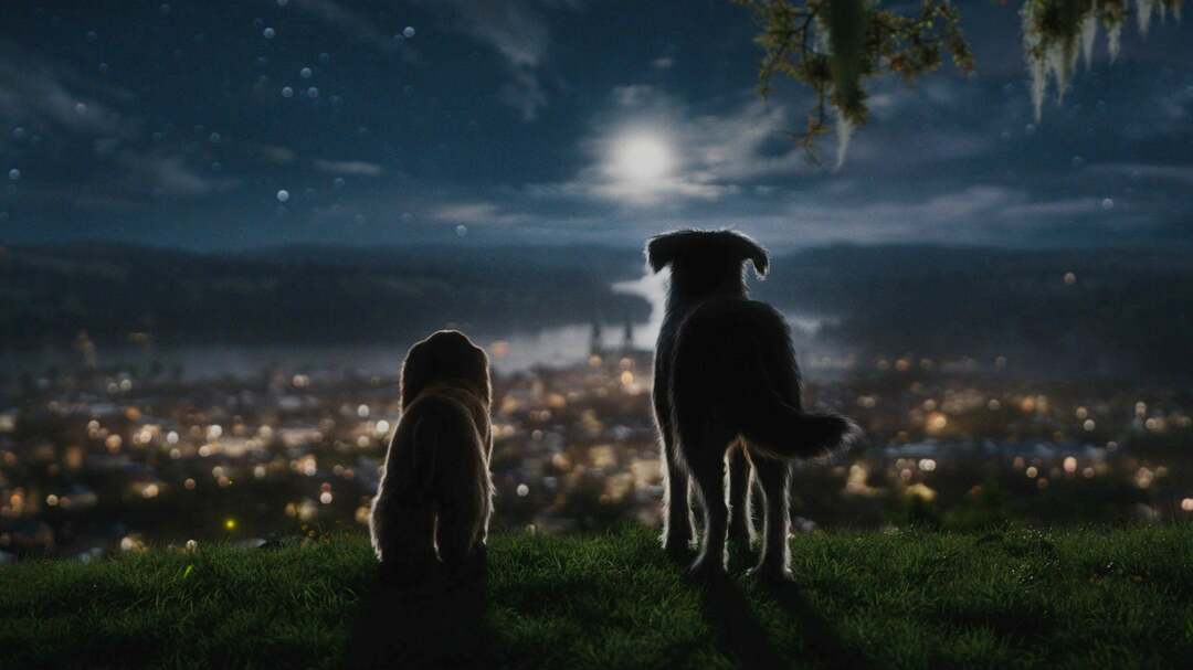 Susi Und Strolch Trailer - Bild 1 von 8