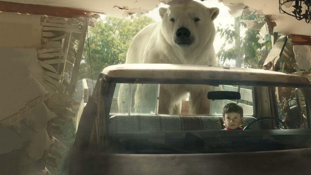 Timmy Flop: Versagen auf ganzer Linie Trailer - Bild 1 von 4