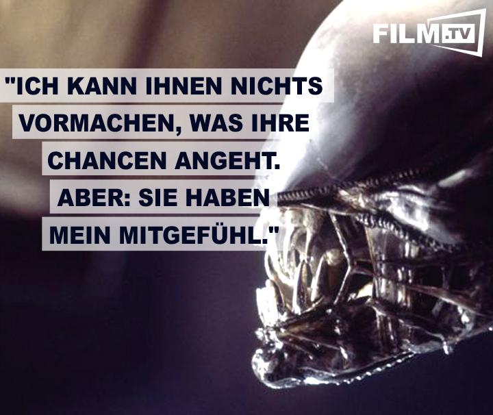 Top 25 Zitate aus Horror-Filmen - Bild 2 von 25